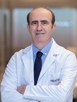 Prof. Dr. Ahmet Göçmen