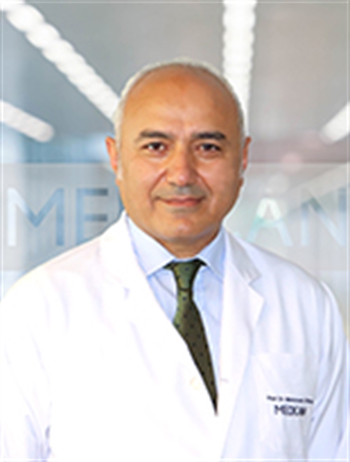 Prof. Dr. Mehmet İbiş