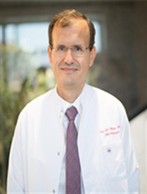 Prof. Dr. Ayhan Olcay