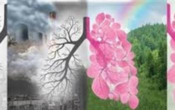 Akciğer Kanseri En Sık Rastlanan Kanser Türlerinin Başında Yer Alıyor
