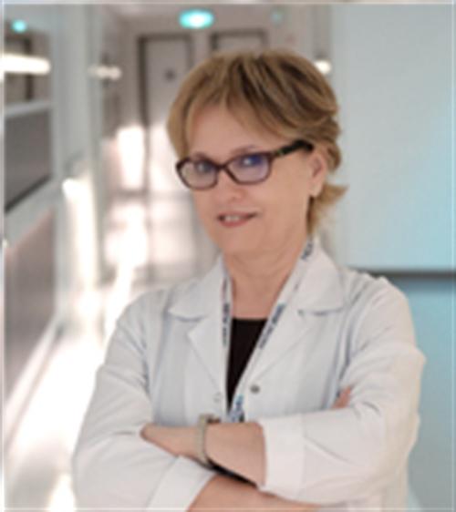 Prof. Dr. İnci Mevlitoğlu