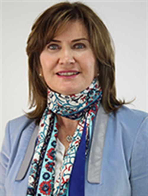 Prof. Dr. Siren Sezer
