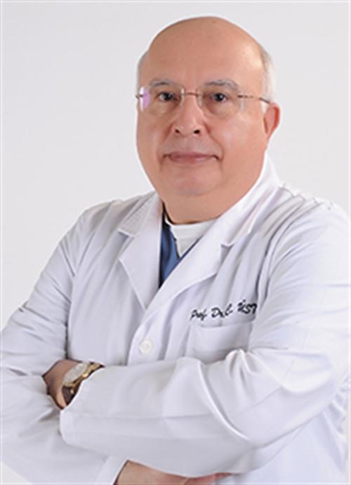 Prof. Dr. Cazip Üstün