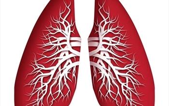 Akciğerleri Yeniden Doğmuş gibi Temizleyen Yöntem