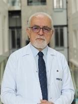 Prof. Dr. Yener Gültekin
